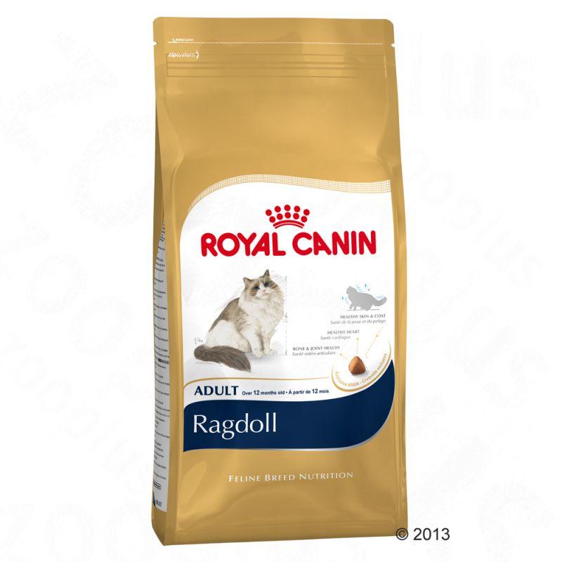 376778_rc_ragdoll_3
